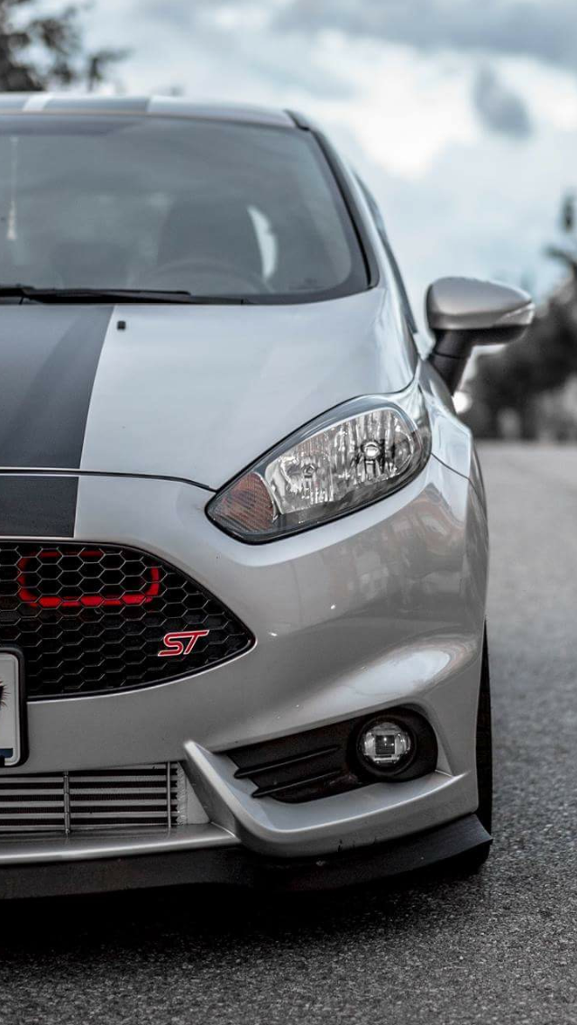 Canadian Group Buy: 2014-2016 Fiesta ST Ram Air BIG MOUTH Intake